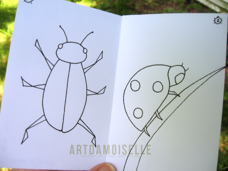 Open booklet showing simple line drawings of a beetle and a ladybug.